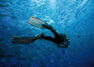 scuba-libre-plongee-bonifacio-4